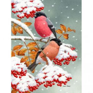 Снегири и первый снег Алмазная вышивка мозаика Алмазное Хобби