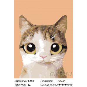 Мурзик Раскраска по номерам на холсте Живопись по номерам A551