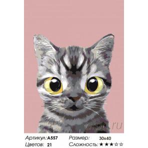 Полосатик Раскраска по номерам на холсте Живопись по номерам A557