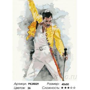Фредди Меркьюри Раскраска картина по номерам на холсте PK24029