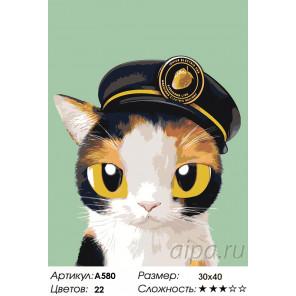 Капитан Раскраска по номерам на холсте Живопись по номерам A580