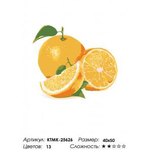 Количество цветов и сложность Сочный апельсин Раскраска по номерам на холсте Живопись по номерам KTMK-25626