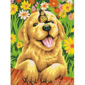 Раскладка Щенок садовник Раскраска по номерам акриловыми красками на холсте Живопись по номерам
