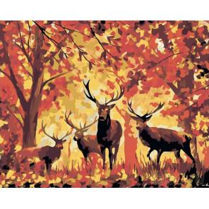 Раскладка Олени в осеннем лесу Раскраска картина по номерам на холсте LA16