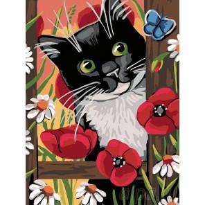 Раскладка В полевых цветах Раскраска картина по номерам на холсте A140