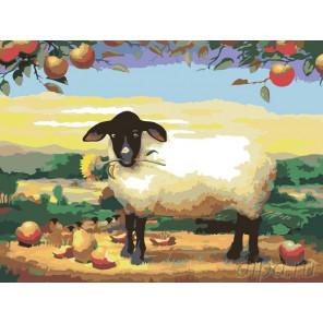 Раскладка Овечка Раскраска картина по номерам на холсте RA007