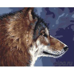 Раскладка Волк Раскраска картина по номерам на холсте RA44