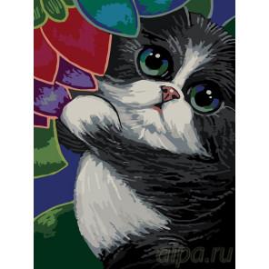 Котик в саду Раскраска по номерам на холсте Живопись по номерам A375