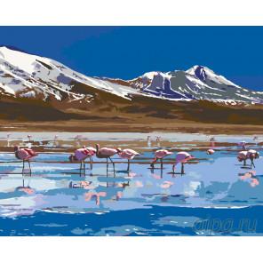 Фламинго на озере Раскраска по номерам на холсте Живопись по номерам Z3135