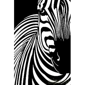 Окрас зебры Раскраска по номерам на холсте Живопись по номерам PA95