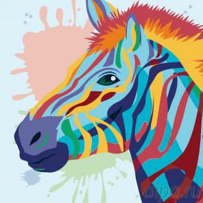 Разноцветная зебра Раскраска по номерам на холсте Живопись по номерам PA96