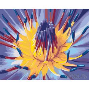 Сердце цветка Раскраска по номерам на холсте Живопись по номерам F50