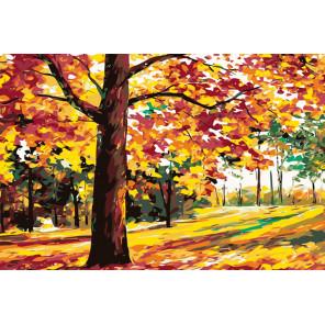 раскладка Вековой лес Раскраска картина по номерам на холсте