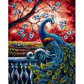 раскладка Павлин весной Раскраска картина по номерам на холсте