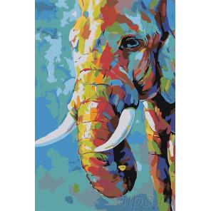 Разноцветный слон Раскраска картина по номерам на холсте A501