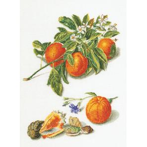 Апельсины и мандарины Набор для вышивания Thea Gouverneur 3061