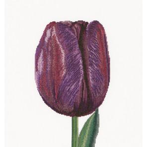 Фиолетовый Тюльпан Триумф Набор для вышивания Thea Gouverneur 514