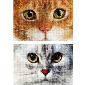 Два котёнка Набор для вышивания Thea Gouverneur 540A