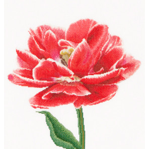 Ранний красно-белый тюльпан Набор для вышивания Thea Gouverneur 520A