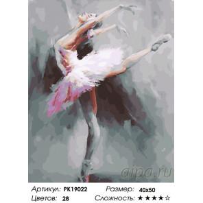 Великолепие балета Раскраска картина по номерам на холсте PK19022
