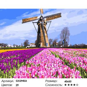 Количество цветов и сложность Тюльпаны и мельница Раскраска картина по номерам на холсте GX29433