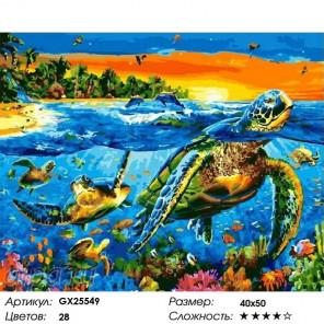 Сложность и количество цветов Черепахи в океане Раскраска картина по номерам на холсте GX25549