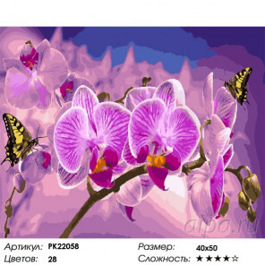 Сложность и количество цветов Цветок орхидеи Раскраска картина по номерам на холсте PK22058