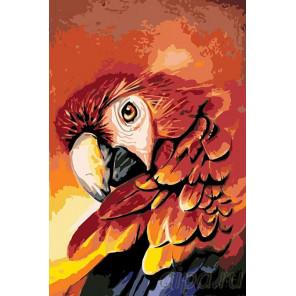 Раскладка Огненный попугай Раскраска картина по номерам на холсте A358