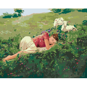 Раскладка Сон на лугу Раскраска картина по номерам на холсте RA003