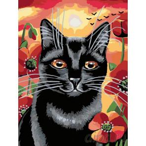 Раскладка Котейка в маках Раскраска картина по номерам на холсте A134