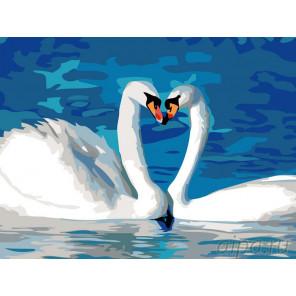Пара лебедей Раскраска картина по номерам на холсте KRYM-AN10