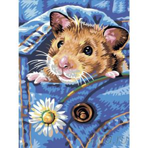 Хомячок Раскраска картина по номерам на холсте A53