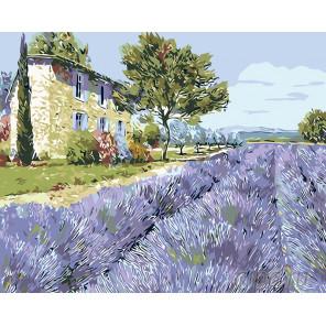 Раскладка Лаванда Прованса Раскраска картина по номерам на холсте KTMK-65418