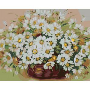 Раскладка Пушистые ромашки Раскраска картина по номерам на холсте KTMK-23177