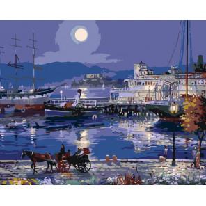 Лунная ночь Раскраска картина по номерам на холсте KTMK-55929