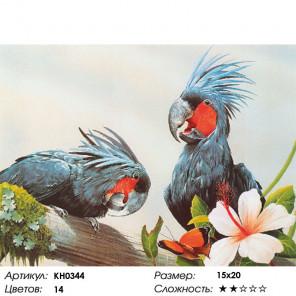 Попугаи Раскраска картина по номерам на холсте KH0344