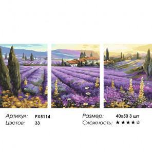 Лавандовые поля Триптих Раскраска картина по номерам на холсте PX5114