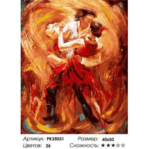 Сложность и количество цветов Вихрь танго Раскраска картина по номерам на холсте PK35031