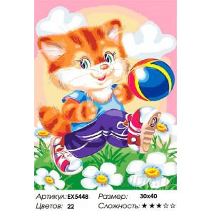 Сложность и количество цветов Котик-футболист Раскраска картина по номерам на холсте EX5448