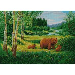 Пример оформления в рамку Пейзаж с медведями Ткань с нанесенным рисунком для вышивки бисером Конек 1233