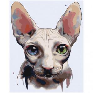 Кошка Сфинкс Раскраска картина по номерам на холсте