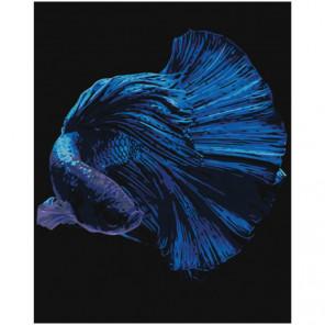 Синяя рыбка 80х100 Раскраска картина по номерам на холсте