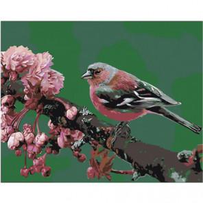 Птица на ветке Раскраска картина по номерам на холсте