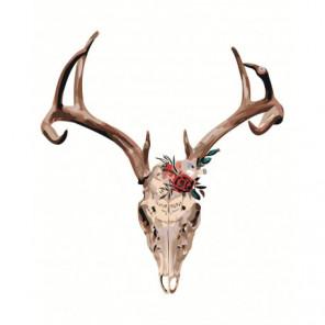 Олений череп 80х100 Раскраска картина по номерам на холсте