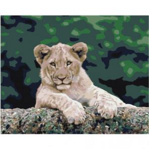 Довольный львенок 80х100 Раскраска картина по номерам на холсте