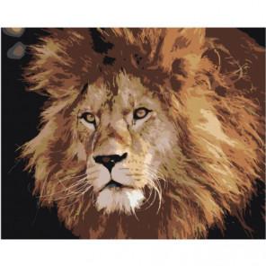 Брутальный лев 80х100 Раскраска картина по номерам на холсте