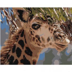 Жираф 100х125 Раскраска картина по номерам на холсте
