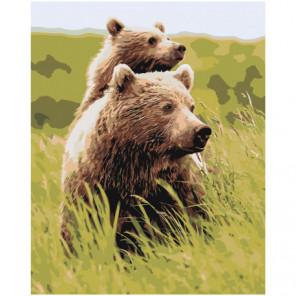 Бурые медведи в поле 100х125 Раскраска картина по номерам на холсте