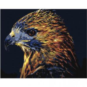Пестрый орел 80х100 Раскраска картина по номерам на холсте
