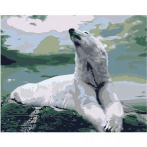 Белый медведь на скале 80х100 Раскраска картина по номерам на холсте